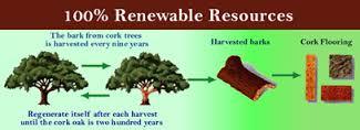 Cork Resources